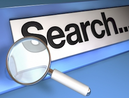 Search Domain Name