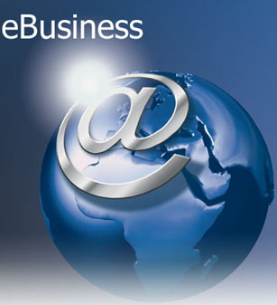 Web Business Intellectual Services