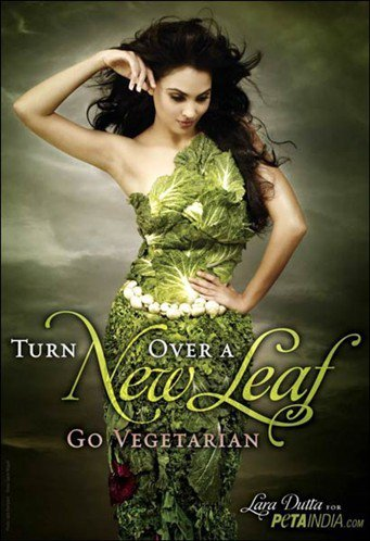 Vegetarian Vege Life