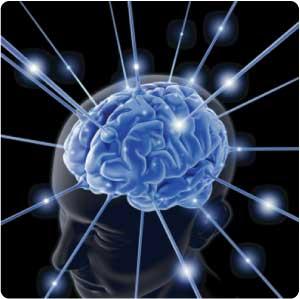 Brain Memeory